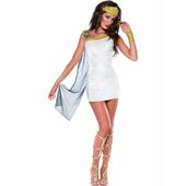 Sexy Venus Costume