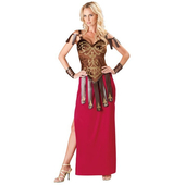 Gorgeous Gladiator costume