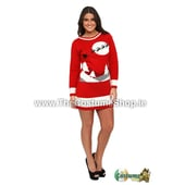 Ladies Sleigh Christmas Jumper