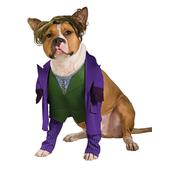 The joker - pet costume