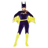 Gotham girls batgirl costume